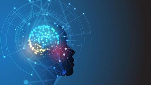 AI và tự động hóa trong tiếp thị kỹ thuật số