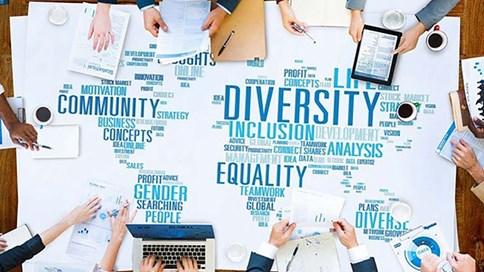 Cách 4 công ty hàng đầu thế giới đa dạng hóa Hội đồng quản trị